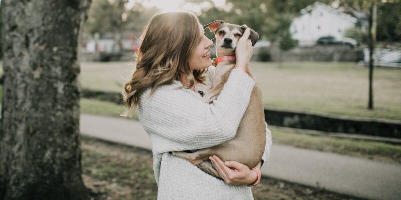 What you should know about senior pet adoption
