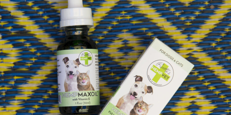 How to give your cat or dog CBD pet treats