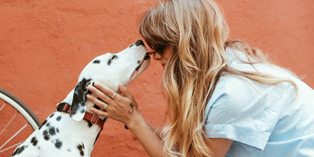 Top 5 Must-Have Apps for Dog Walkers